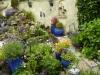 Mijn tuin 01