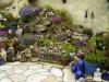 Mijn tuin 02