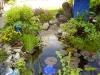 Mijn tuin 06