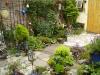 Mijn tuin 08