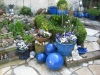 Mijn tuin 09