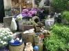 Mijn tuin 13