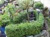 Mijn tuin 23
