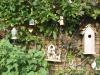 Mijn tuin 28